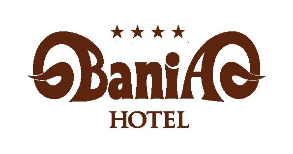 hotel-bania-logo-brazowe